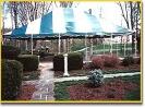 tent_rentals_6_20120409_1128390226